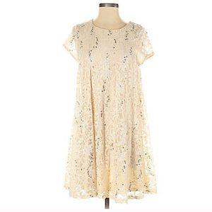 Altar'd State Cream Lace + Sequin Swing Dress. XS